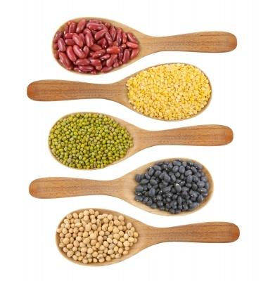 Bean Nutrition